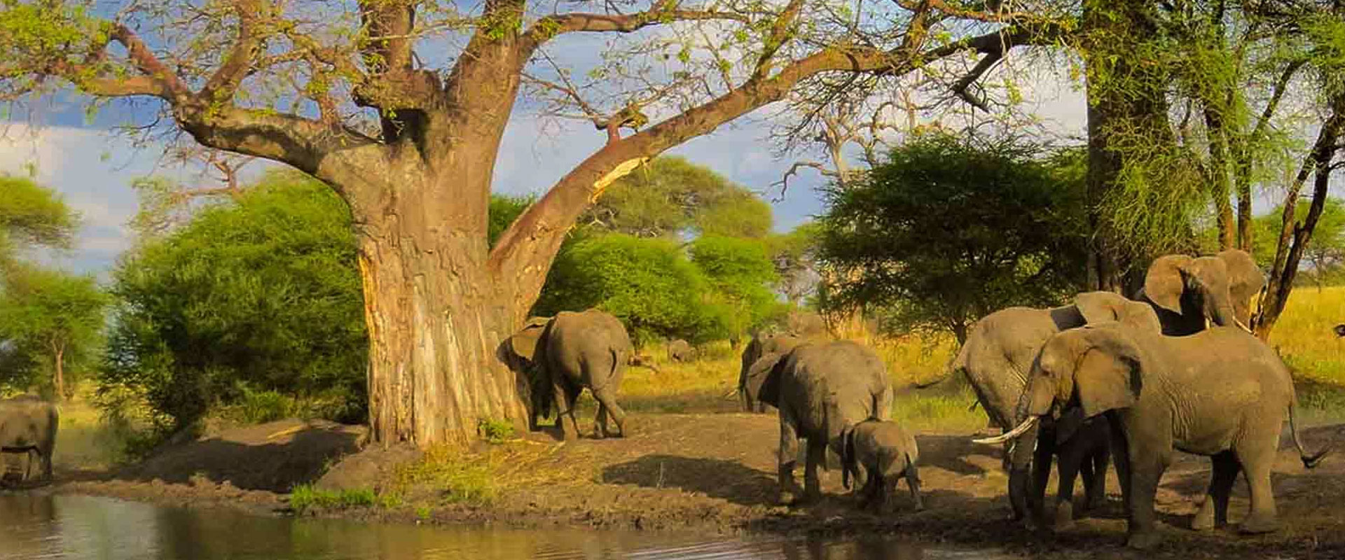 Arusha National Park   Face Of Africa Adventure